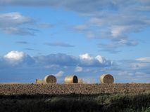 Straw Bales Images stock
