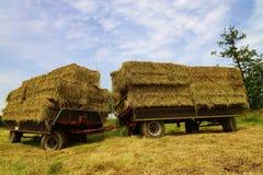Straw Bales photographie stock