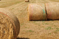 Straw Bales Photos stock