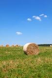 Straw Bales auf einem Feld Lizenzfreie Stockfotografie