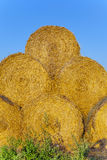 Straw Bales in autumn on a field Royalty Free Stock Images