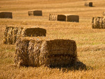 Straw Bales Background Immagini Stock