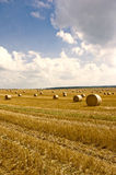 Straw bales and blue sky Stock Image