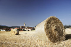Straw bales on corn fields after harvest Royalty Free Stock Image