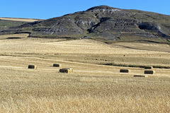 Straw bales in cornfield in rural landscape. Spain, provinie Burgos, autonomous region, community Castile and Leon: just outside the small city Castrojeriz Royalty Free Stock Images