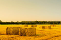 Straw bales in a countryside landscape Royalty Free Stock Images