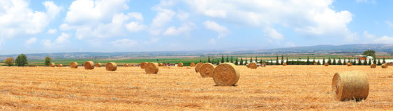 Straw bales countryside Royalty Free Stock Photography