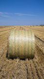 Straw bales in a countryside Royalty Free Stock Images