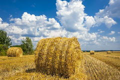 Straw bales, the crop stubble. Stock Photography