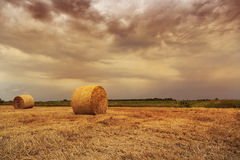 Straw bales with dramatic sky Stock Image