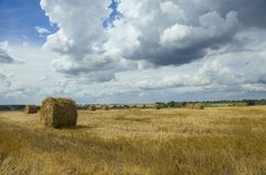 Straw bales in empty field after harvesting time royalty free stock photo