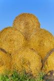 Straw Bales en automne sur un champ Images libres de droits