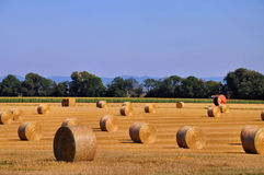 Straw bales in fall Royalty Free Stock Images