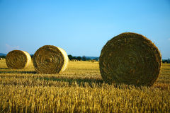 Straw bales on the farm field. And blue sky Stock Photos