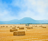 Straw bales on farmland Royalty Free Stock Photography
