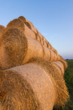 Straw bales on farmland. Bale of straw. Straw bales. Selective focus  Straw bales stacked on the pile Stock Photography