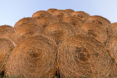 Straw bales on farmland. Bale of straw. Straw bales. Selective focus  Straw bales stacked on the pile Stock Photos