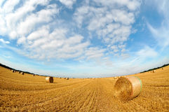 Straw bales on farmland with blue cloudy sky Stock Photos
