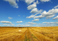 Straw bales on farmland. With blue cloudy sky Stock Image