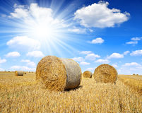 Straw bales on farmland Stock Photos
