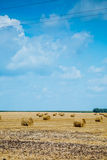 Straw bales on farmland Stock Photography