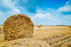 Straw bales on farmland Royalty Free Stock Photo