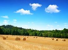 Straw bales on farmland Royalty Free Stock Photo