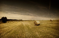 Straw bales on farmland with blue cloudy sky stock photo