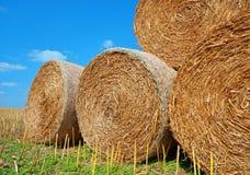 Straw bales on farmland. With blue sky Stock Photo
