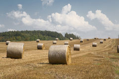 Straw bales Royalty Free Stock Photography