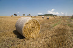 Straw bales. On farmland with a blue sky, Czech republic Stock Image