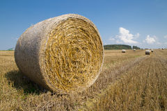 Straw bales. On farmland with a blue sky, Czech republic Royalty Free Stock Images