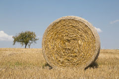 Straw bales. On farmland with a blue sky, Czech republic Royalty Free Stock Photos