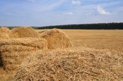 Straw bales on farmland Royalty Free Stock Photos