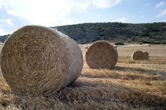 Straw bales in a farmland Stock Images