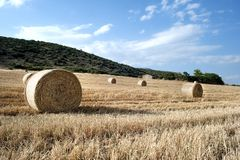 Straw bales in a farmland Stock Photography