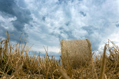 Straw bales on farmland Storm clouds. Royalty Free Stock Photos