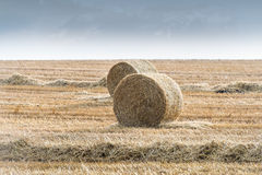 Straw bales Stock Images