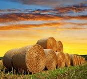 Straw bales on farmland Stock Photography