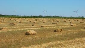 Straw bales on farmland with wind turbines stock video