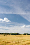 Straw bales in a field Stock Images