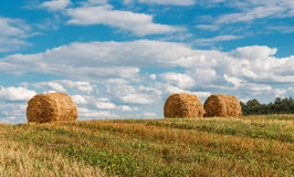 Straw bales. Straw bales in the field Stock Photo