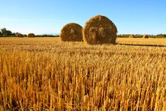 Straw bales in a field Royalty Free Stock Image