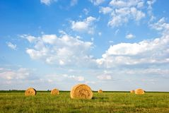Straw Bales in field. Image of straw or hay bales in a field Stock Images
