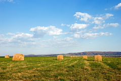 Straw Bales in field Stock Photos