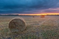 Straw bales on field against sky Royalty Free Stock Photos