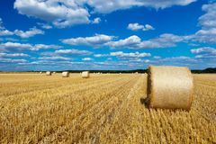Straw bales in a field with blue and white sky Royalty Free Stock Photos