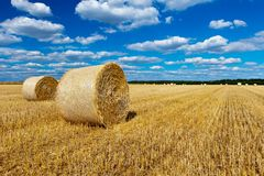 Straw bales in a field with blue and white sky Stock Photography