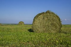 Straw bales on a field in the foreground.  Harvest of hay. Clouds in the sky. Agricultural farm. Hills with cultivated fields and. Straw bales on a field in the royalty free stock images