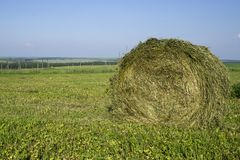 Straw bales on a field in the foreground.  Harvest of hay. Clouds in the sky. Agricultural farm. Hills with cultivated fields and. Straw bales on a field in the royalty free stock photos